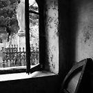 Through A Window by DarrynFisher
