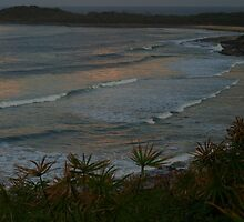 evening twist - Yamba NSW by Specka