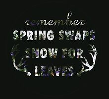Mumford & Sons Winter Winds Floral Design by Jesse Knight