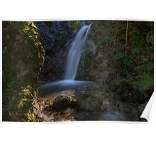 The Falls of Mount Diablo Poster