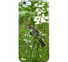 BIRDS AND BLOOMS iPhone Case/Skin