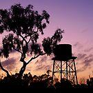 Sunrise in Moorrinya National Park by Jessica Hacking