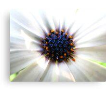 Flowers in Flower Canvas Print