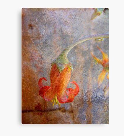 Exquisite Visitor Canvas Print
