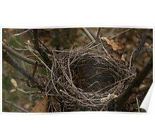 """""""Empty Nest"""" Poster"""