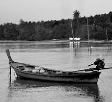 Coconut Island Thailand  by ojmarchphoto