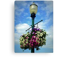 LOOK UP TO THE SKY Canvas Print