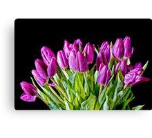 All Bunched Up Canvas Print