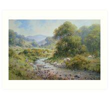 College Valley, Northumberland, England Art Print