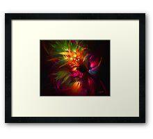 Fractal Fireworks Framed Print