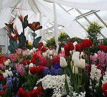 Flower Show 2010! by Linda Jackson