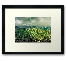""" Porthscatho Hedgerow"" Framed Print"