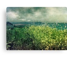 """ Porthscatho Hedgerow"" Canvas Print"