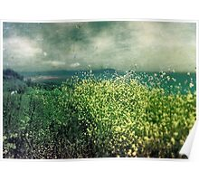 """ Porthscatho Hedgerow"" Poster"