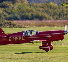 Percival Mew Gull replica G-HEKL by Colin Smedley