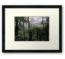 Leura mist Framed Print