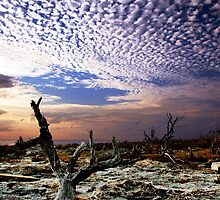 Mackerel Sky by goodieg