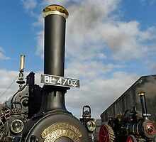 2 Wallis & Steevens Steam Engines by buttonpresser