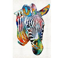 Colorful Zebra Face By Sharon Cummings Photographic Print