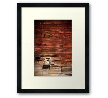 Wooden texture Framed Print