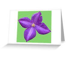 Cute purple violet Greeting Card