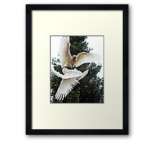 It's Mine I Tell YOU ! Framed Print