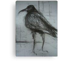 Crow (still life) Canvas Print