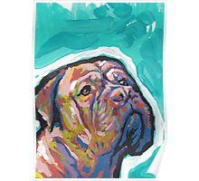Dogue De Bordeaux Dog Bright colorful pop dog art Poster