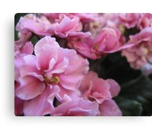 Don't blink because it's Pink - Just wink! Canvas Print