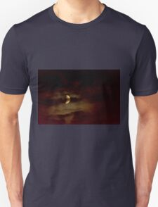 Thinly Veiled Heavenly Body  Unisex T-Shirt
