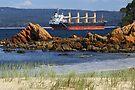 Twofold Bay at Eden by Darren Stones