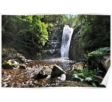 Lower Mathinna Falls  Poster