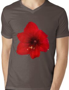 Handsome red flower Mens V-Neck T-Shirt