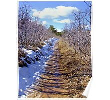 Icy Trail, Roxborough Park Poster