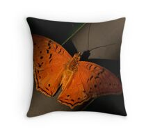 Cruiser Butterfly Throw Pillow