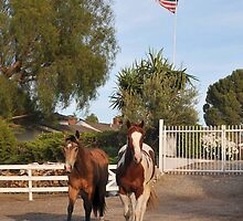 Patriotic Ponys by Walt Conklin