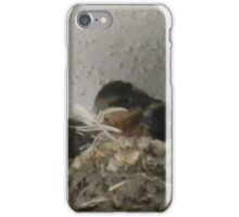 Barn Swallow Babies iPhone Case/Skin
