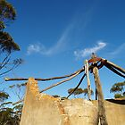 Mallee ruin by jembot