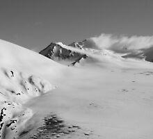 Ice field by RoofdogMedia