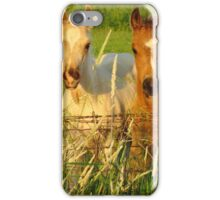 Curious Foals iPhone Case/Skin