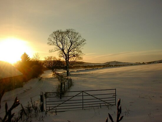 Snow and sun - sunset in Aberdeenshire by Tazfiend