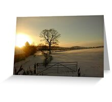 Snow and sun - sunset in Aberdeenshire Greeting Card