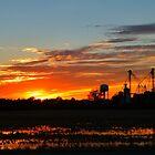 Vivid Sunset by WildestArt
