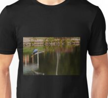 Flying Over The Pond Unisex T-Shirt