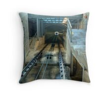 Inside the Ptarmigan Throw Pillow