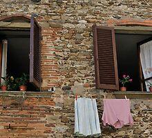 Italian Windows by Tom Grieve