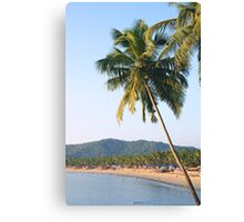 Palm tree over sea and beach Canvas Print