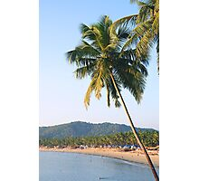 Palm tree over sea and beach Photographic Print