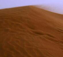 Desert Dune by Annette Brown
