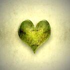 green heart by Anne Seltmann